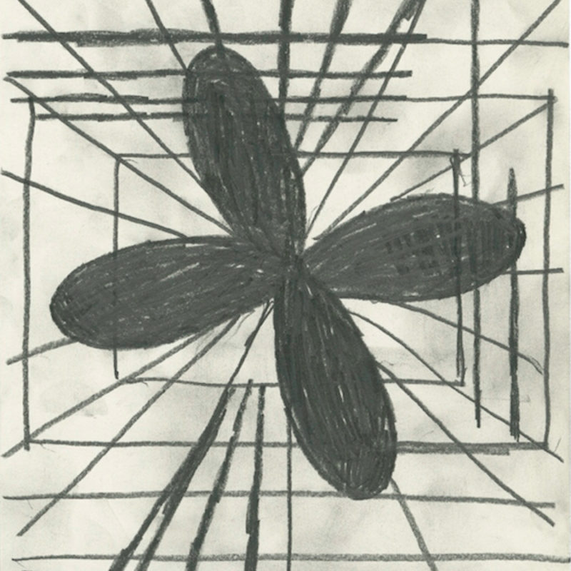 Image: Terry Winters, Addendum/4, 2014, Graphite on paper, 8 ½ × 11 inches. Courtesy of the artist and Matthew Marks Gallery, New York